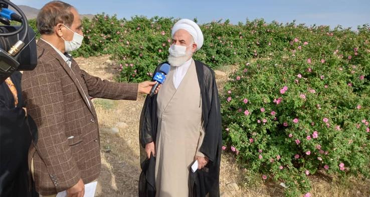 بازدید از باغ ۵۳ هکتاری گل محمدی در قمصر کاشان